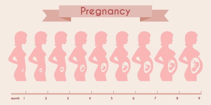 Følg graviditeten din uke for uke